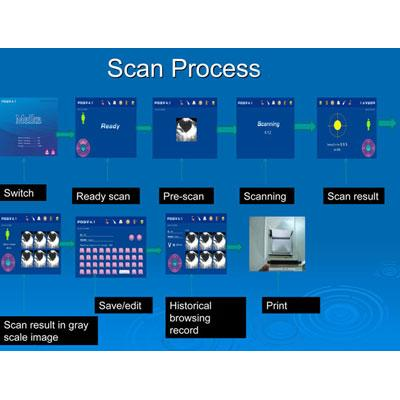 Scan process screen view
