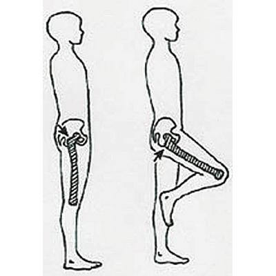 Measuring around the hip circumerence.